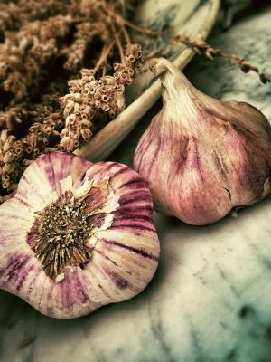 What are the benefits of chewing raw garlic